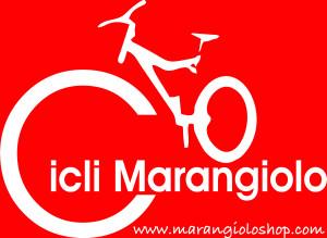 logo-sponsor.pallanuoto
